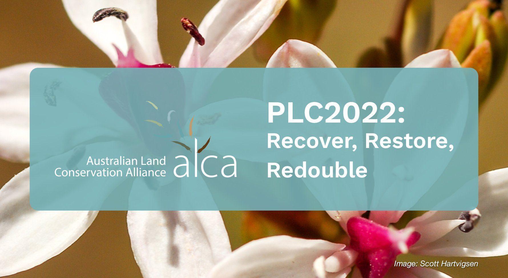 ALCA_PLC2022_website_image_1780x976px_2